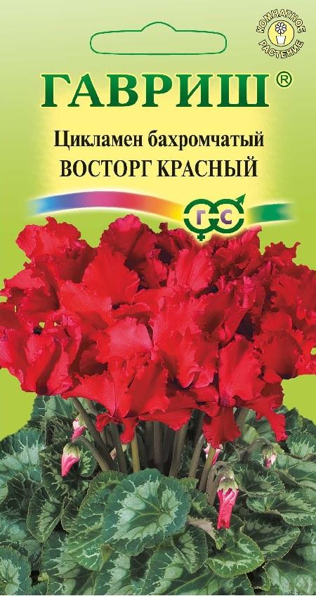 Семена комнатных и экзотических растений купить почтой в 61
