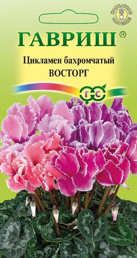 Семена комнатных и экзотических растений купить почтой в 96