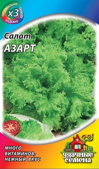 Салат азарт выращивание из семян 33
